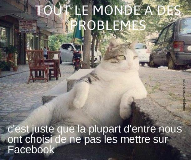 humour-chat-problemes.jpg
