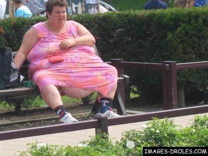 photo drole obese